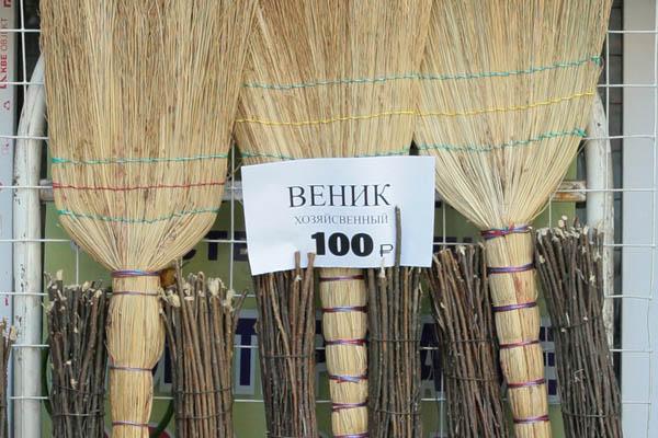 venik600_default